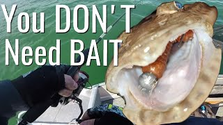 You DON'T need bait MATE (Fishing Australia)