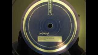 Polyvinyl - Tomorrow World