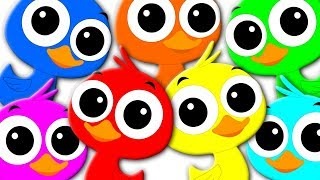 Learn Colors Learning Colors With Ducks Colors Song Preschool Video For Kids kids tv