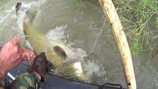 Рыбалка 2021 ЗА ТРОФЕЙНЫМ СОМОМ В ВЕРХОВЬЯ ИЛИ