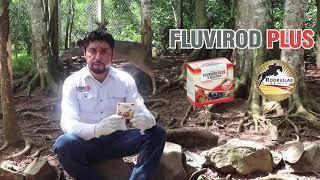 Fluvirod Plus // El Bramadero TV Agropecuario