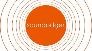Sound Dodger + | Dodge for your life!