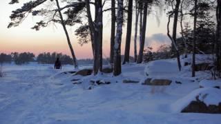 Snowy winter scenes from Espoo, Finland
