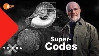 Kann man die Natur vermessen?   Harald Lesch   Ganze Folge   Terra X