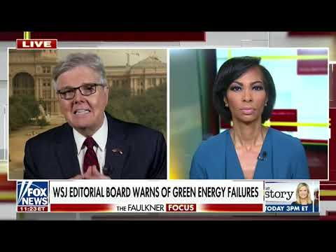 'People need to read the fine print': Texas Lt. Gov. Dan Patrick says Texans with giant electricity bills 'gambled' and lost