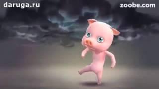 Свиной грипп, это когда ты гриппуешь, а эти свиньи даже не... Видео приколы про грипп