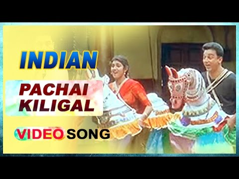 Pachai Kiligal Video Song | Indian Tamil Movie | Kamal Haasan | Sukanya | AR Rahman | Music Master