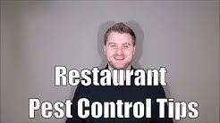 Restaurant Pest Control Tips: How To Keep Your Valentines Day Rush Pest Free
