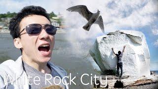白石城小探險﹣尋找大白石!a huge white rock on beach!