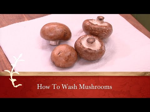 HOW TO WASH MUSHROOMS