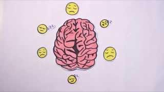 Alkohol - Was passiert in meinem Gehirn?