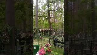 В последний путь  ушел ветеран  ВОВ,101 летний  Сербовеликий Василий Владимирович