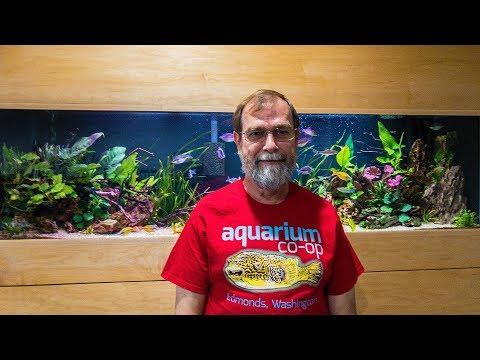Gary Lange The Rainbowfish Guy! #48