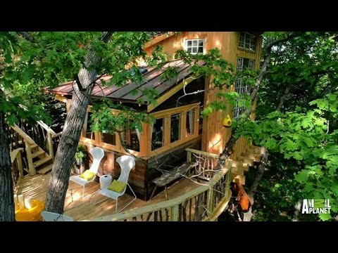Behind The Build Vincent Van Treehouse Treehouse Masters Youtube