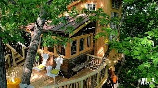 Behind The Build: Vincent Van Treehouse   Treehouse Masters