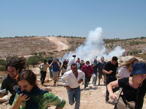 Gaza Under Siege - Eva Bartlett on Reality Asserts Itself Pt 2/2
