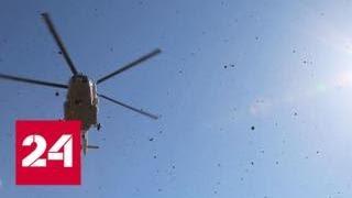 Смотреть видео К месту жесткой посадки вертолета в Таджикистане вылетели спасатели - Россия 24 онлайн