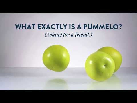 So… what's a pummelo? Sunkist