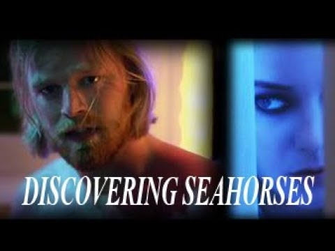 Discovering SEAHORSES  PREMIERE & MAKING OF MINI DOC Indie Film