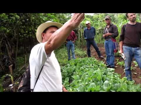 Demo of Agro-Ecological Production in Guatemala