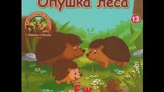 Животные Леса №13