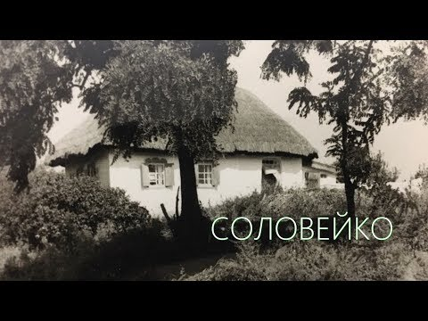 СОЛОВЕЙКО. ФОМА та гурт МАНДРИ / SOLOVEYKO. FOMA And The MANDRY Band / Official Lyric Video