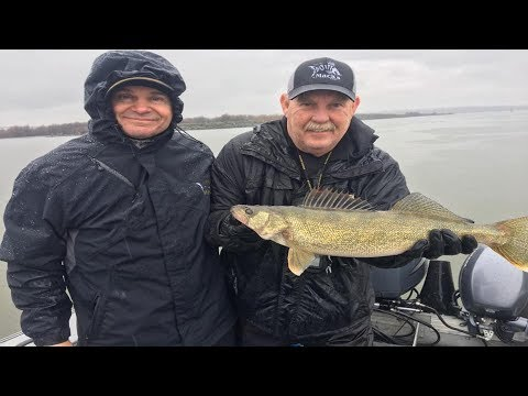 Spring & Summer Columbia River Walleye Fishing