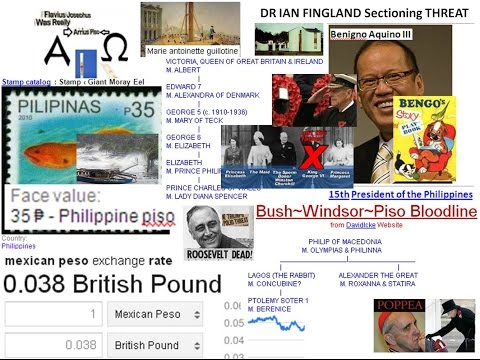 PISO BUSH WINDSOR VERSAILLE World owner Bloodlines & sectioning Dr Ian Fingland HUTTONS NHS profitee
