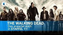 THE WALKING DEAD - Staffel 11: Was erwartet uns?
