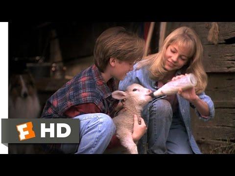 Lassie 59 Movie   Building a Farm 1994 HD