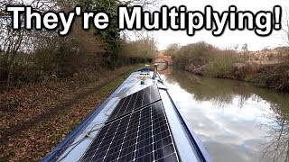 160. Winter cruise on my narrowboat (Part 2); Rugby to Brinklow
