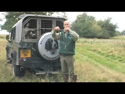 Shooting Times Gundog Training
