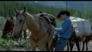 A Love That Will Never Grow Old(Brokeback Mountain MV)