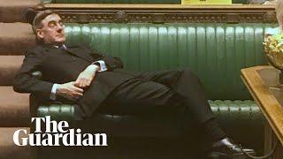 'Sit up!': Caroline Lucas slams Jacob Rees-Mogg's body language during Brexit debate