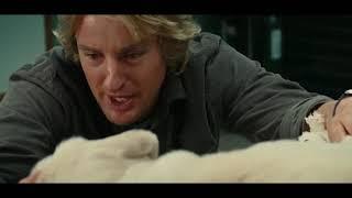 #4 Марли и Я. Фрагмент из фильма.
