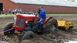 Massey Ferguson 65 Gets Totally Stuck in Huge Mudhole at Ferguson Days | Needs Help | DK Agri