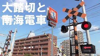 大踏切と南海電車の通過集 特急こうやも登場する高野線から railroad crossing japan