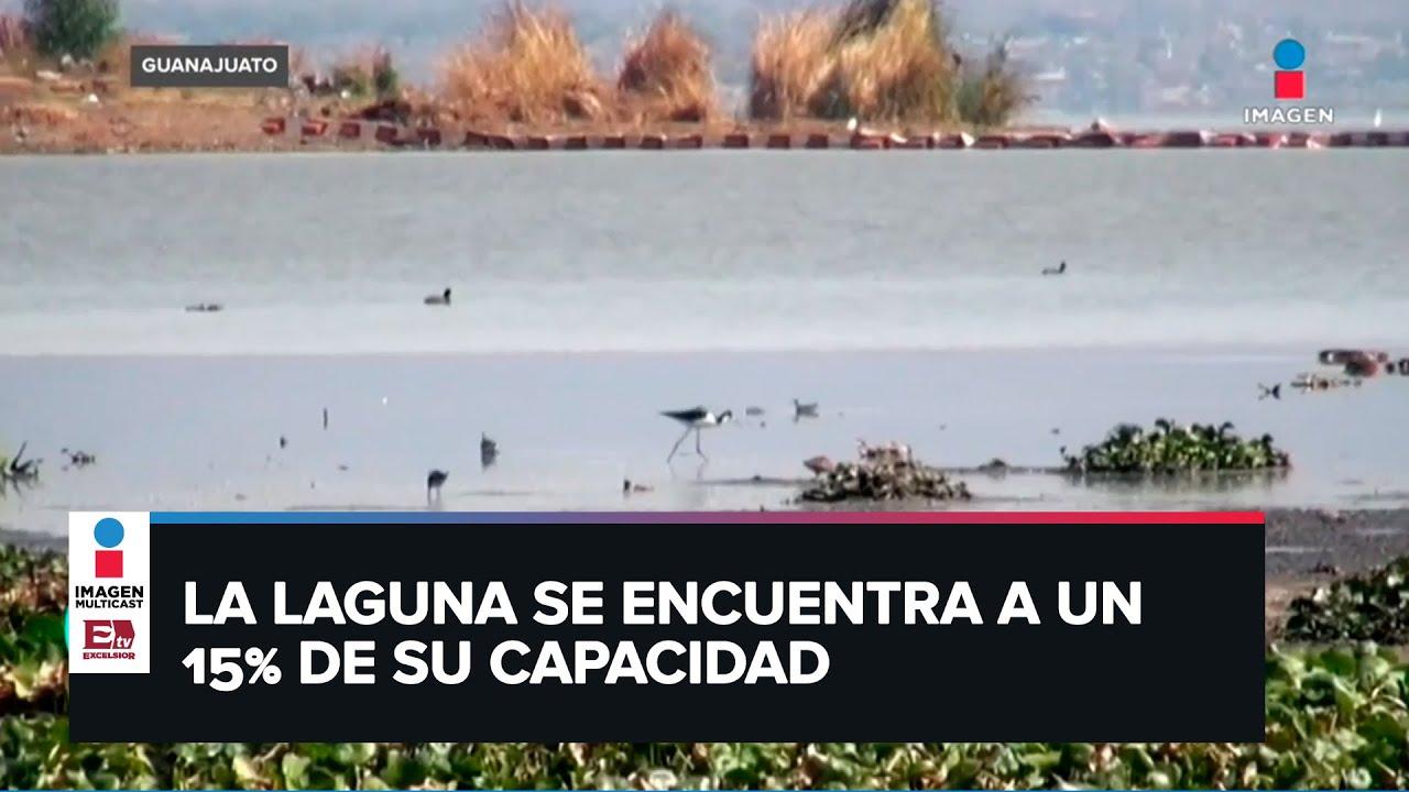 Download Lago de Yuriria en Guanajuato se seca por altas temperaturas