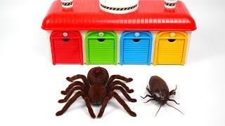 Aprender Colores - Gigante Insecto Juguete Monstruo | Cars, Lightning McQueen & Los COLORES