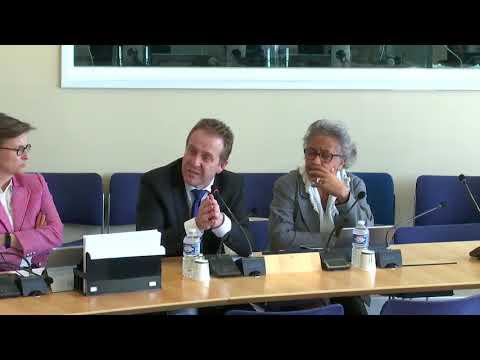 DCT Olivier Gaillard sur la différenciation territoriale / révision constitutionnelle
