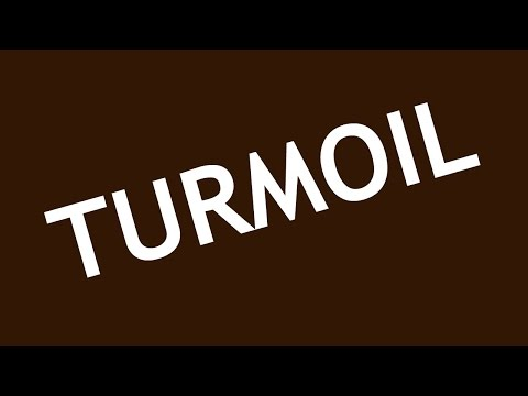 I REALLY DIDN'T SEE HIM STANDING THERE OK? | Turmoil #10