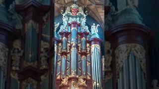 Orgelconcert Bavo Haarlem.