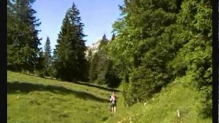 Trail Grand Duc 2011