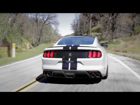 Shelby GT350 Sights & Sounds - Beauty, Exhaust, Fly-by - Everyday Driver