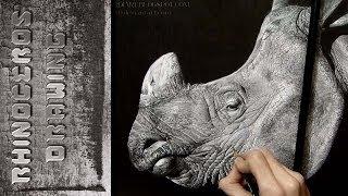 Rhinoceros Drawing Realistic