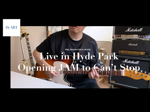 RED HOT CHILI PEPPERS Can't Stop Hyde Park