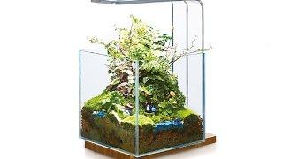 Hinterfeld HK Aquarium WabiKusa Water Plant Chihiros LED Light Simple Woods Planted Lamp