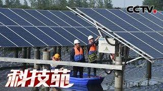 《科技苑》 20190627 太阳能 流水槽 养鱼简单更高效| CCTV农业