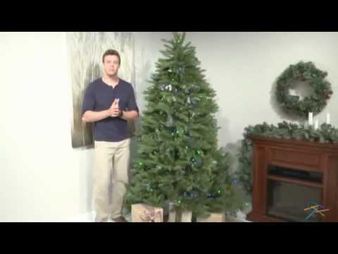 Dunhill Fir Christmas Tree.7 5 Ft Multi Colored Pre Lit Dunhill Fir Hinged Tree Product Review Video