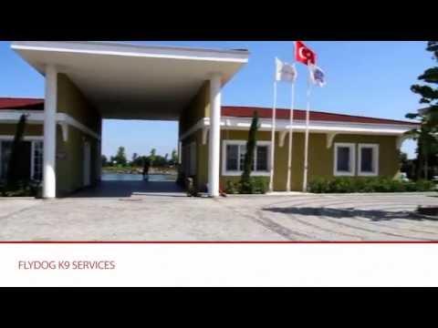 Flydog K9 Services...Best of Turkey